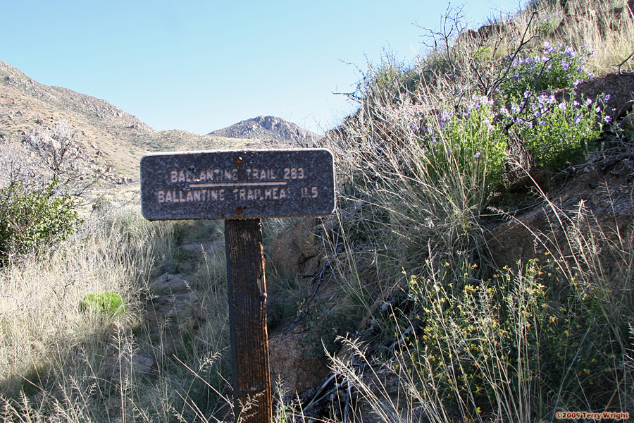 Ballantine Trail Hike: Image 1