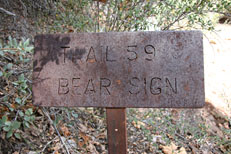 Bear Sign Canyon - Secret Canyon Loop Hike: Image 13