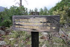 Bill Williams Mountain Hike: Image 11