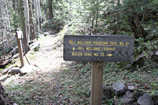 Bill Williams Mountain Hike: Image 54