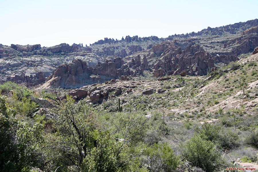 Bluff Spring Loop Hike: Image 63