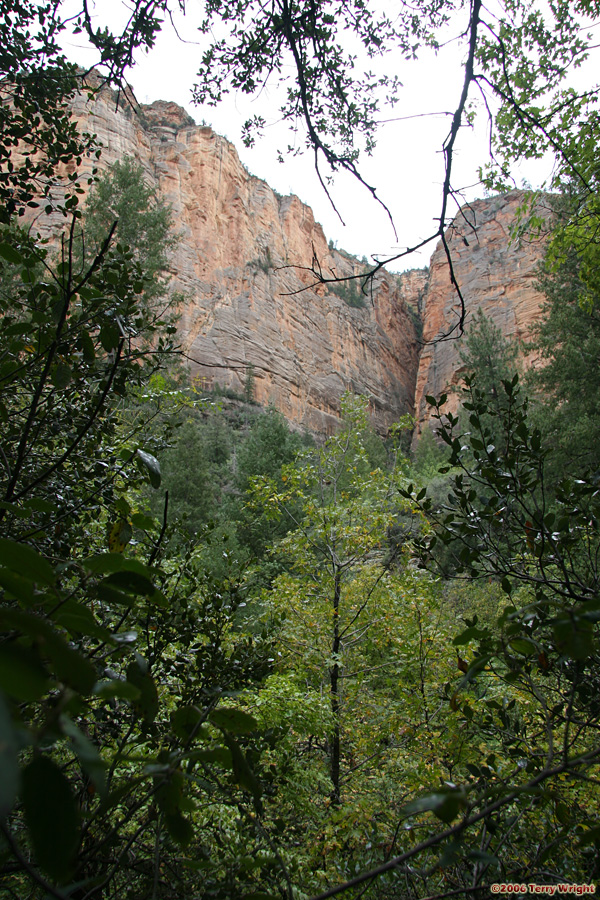 Boynton Canyon Hike: Image 28