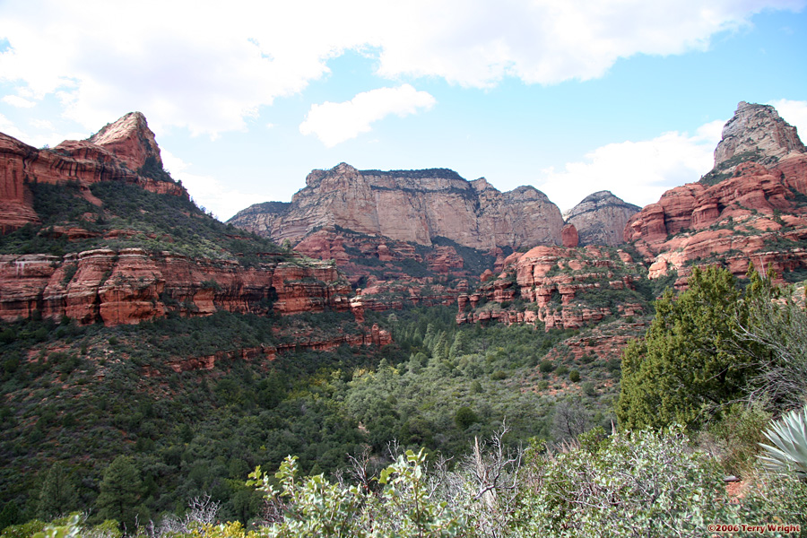 Boynton Canyon Hike: Image 43