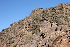 Camelback Mountain Cholla Trail Hike: Image 12