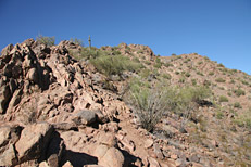 Camelback Mountain Cholla Trail Hike: Image 14