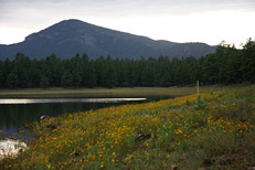 Dogtown Lake Loop Hike: Image 7
