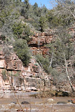 Fossil Springs Trail Hike: Image 21