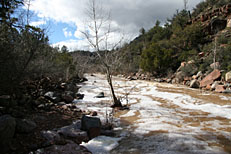 Fossil Springs Trail Hike: Image 30