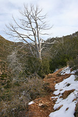 Soldier Camp Trail Hike: Image 14