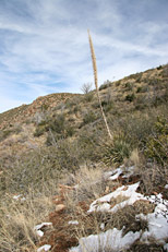 Soldier Camp Trail Hike: Image 23