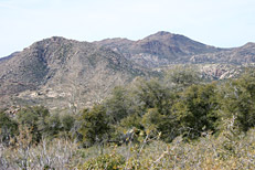 Soldier Camp Trail Hike: Image 31