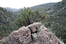 Haunted Canyon Hike: Image 4