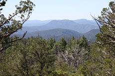 Horton Creek Loop Hike: Image 26