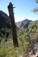 Loy Canyon / Secret Mountain Hike: Image 15