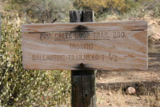Pine Creek Loop Hike: Image 1