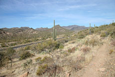 Pine Creek Loop Hike: Image 3