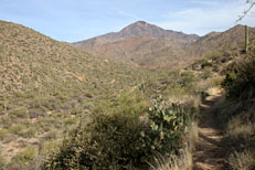 Pine Creek Loop Hike: Image 7