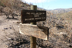 Pine Creek Loop Hike: Image 24