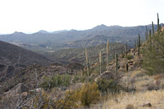 Pine Creek Loop Hike: Image 19