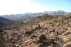Pine Creek Loop Hike: Image 21