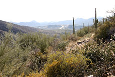 Pine Creek Loop Hike: Image 25