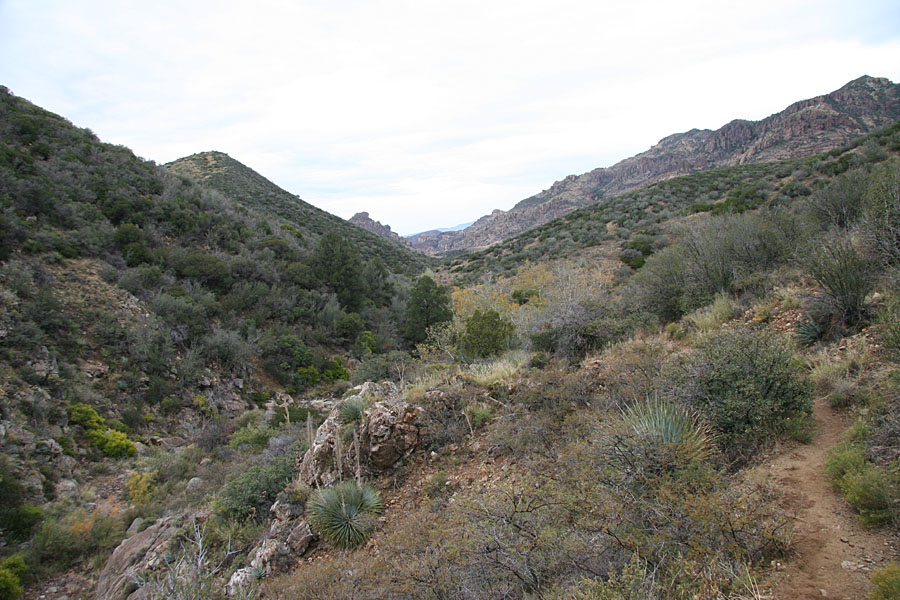 Rogers Canyon Hike: Image 1