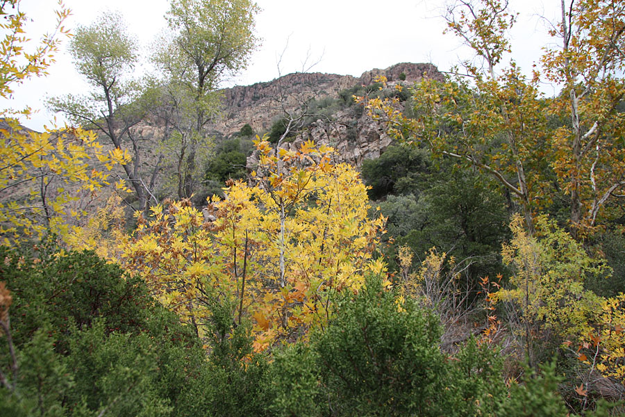 Rogers Canyon Hike: Image 12