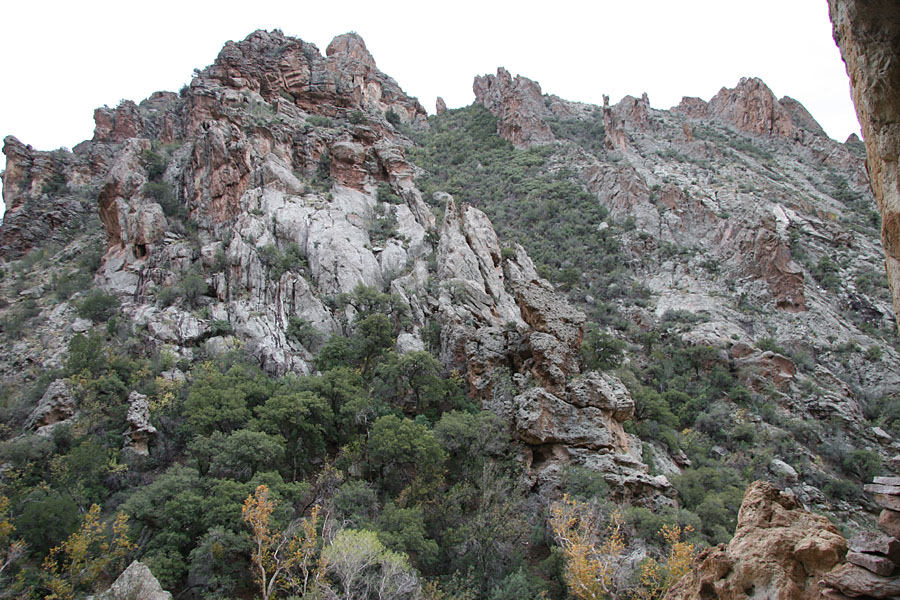 Rogers Canyon Hike: Image 26