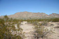 San Tan Loop Hike: Image 1