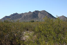 San Tan Loop Hike: Image 2