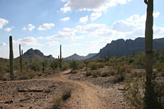 San Tan Loop Hike: Image 29