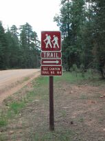 See Canyon Trail Hike: Image 35