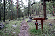 South Fork Trail Hike: Image 1
