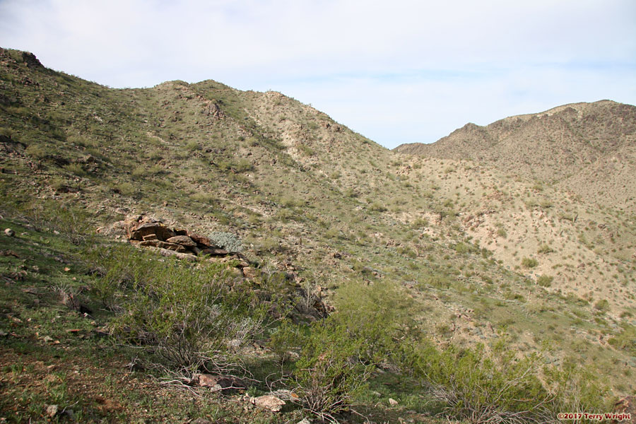 Bursera-National-Pyramid Loop Hike: Image 2