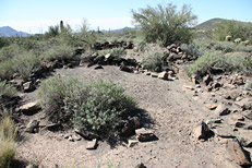 Arizona Archaeology Awareness Month Hike: Image 9