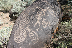 Arizona Archaeology Awareness Month Hike: Image 13