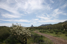 Black Mesa - Dutchman's Trail Loop Hike: Image 26