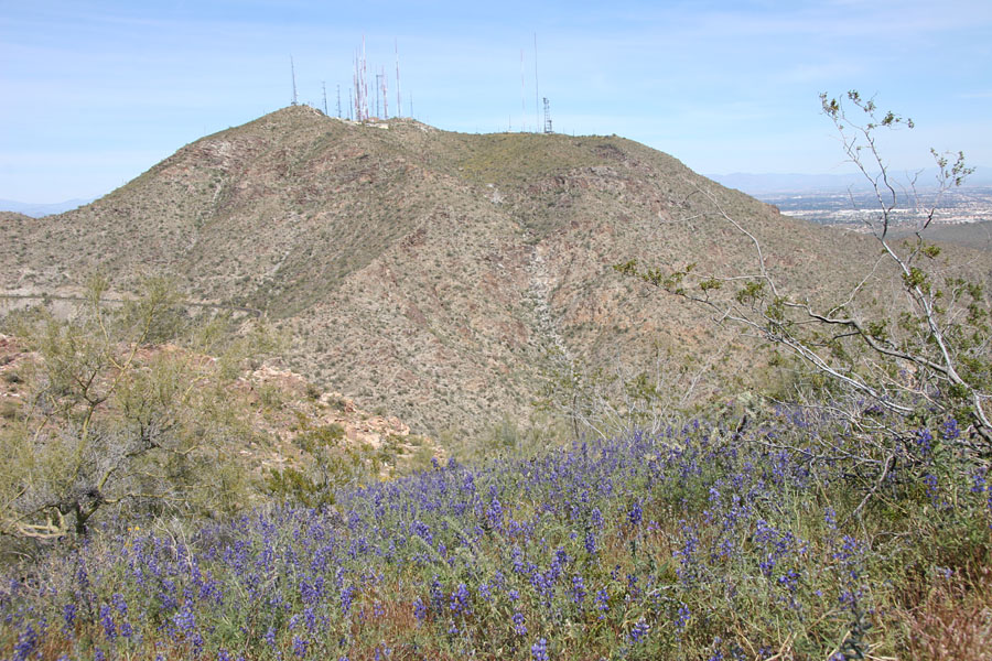 Telegraph Pass / National Trail Hike: Image 34
