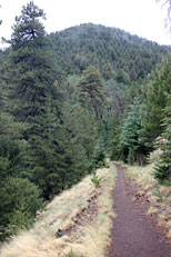Weatherford Trail Hike: Image 13