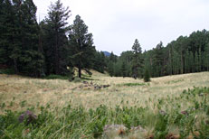 Weatherford Trail Hike: Image 16