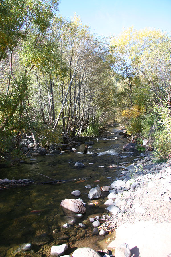 West Clear Creek Trail Hike: Image 6