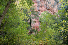 West Fork Trail Hike: Image 6