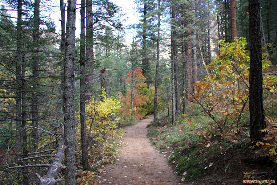 West Fork Trail Hike: Image 12
