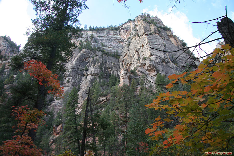 West Fork Trail Hike: Image 13