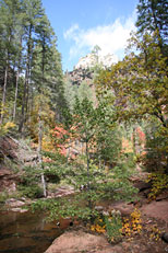 West Fork Trail Hike: Image 37