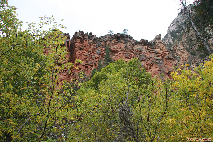West Fork Trail Hike: Image 63