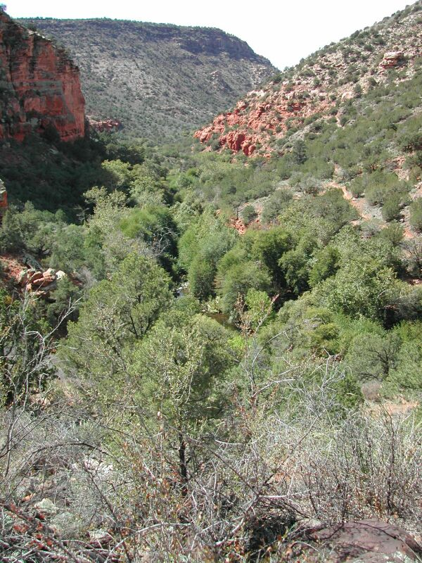 Bell Trail Hike: Image 21